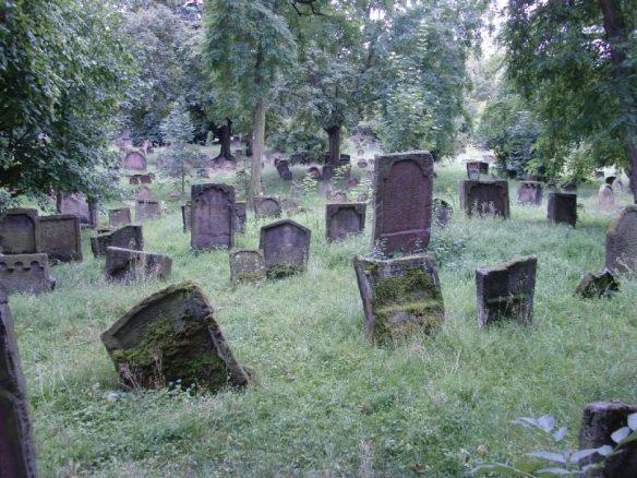 Auf dem größten jüdischen Friedhof Europas