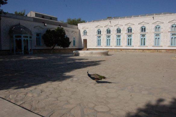 Der Sommerpalast sollte den Emir ein wenig an seinen Studienort St. Petersburg erinnern