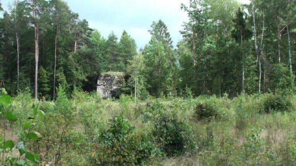 Der Bunker Heinrich Himmlers